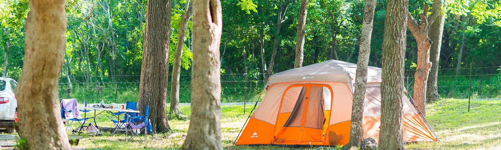 tent-trees